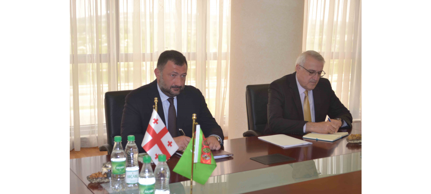 Meeting at the Ministry of Foreign Affairs of Turkmenistan with the Ambassador Extraordinary and Plenipotentiary of Georgia